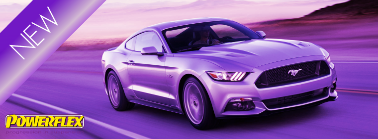 NL2016-28 Ford Mustang 2015 on
